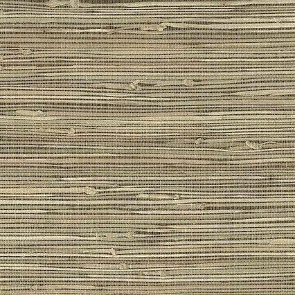 Beige Grasscloth Natural Wallpaper, textured, medium beige