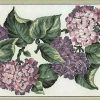 Purple lilac vintage wallpaper border, alternate view, hydrangeas, green leaves, cream faux finish
