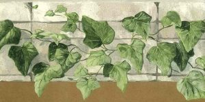 green ivy wallpaper border, cutout, kitchen, taupe, stone