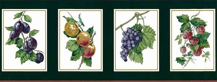Green Fruit vintage Wallpaper Border, white, gold edging, plums, grapes, putple