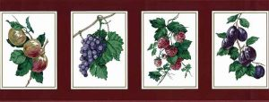 Vintage Waverly Framed Fruit Wallpaper Border in Cranberry Red