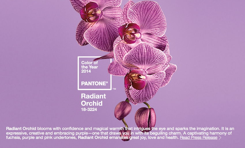 Radiant Orchid 2014 Pantone Color of the Year