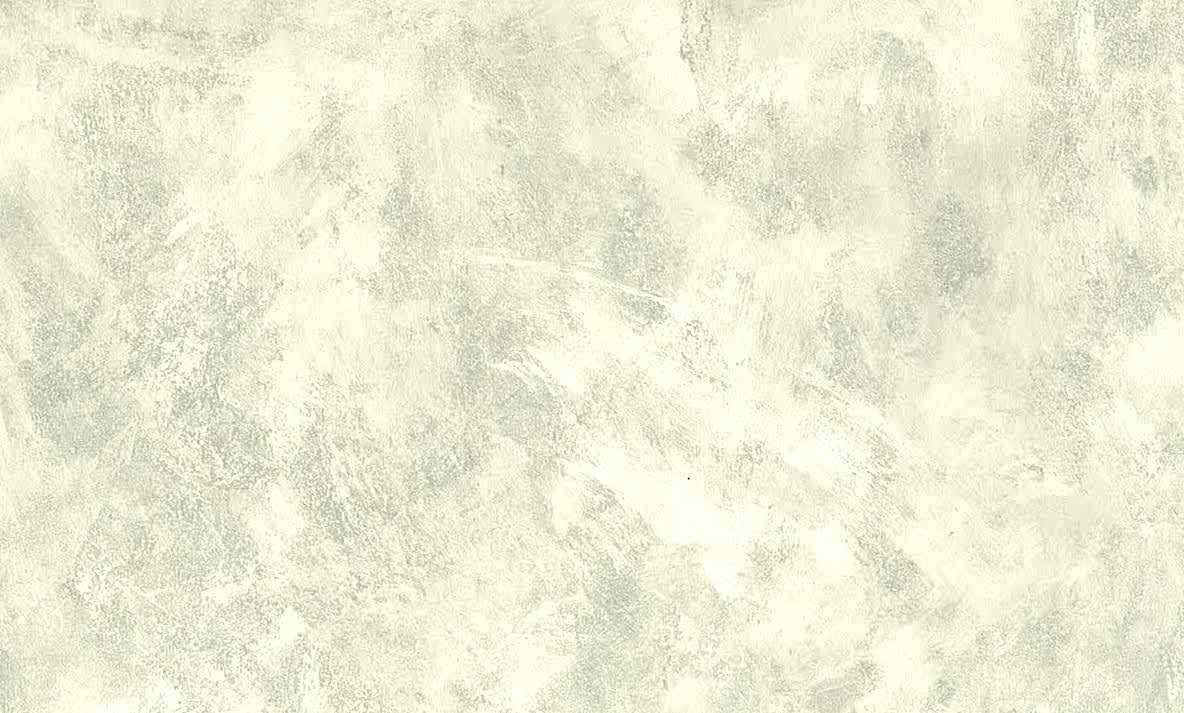 Green Cream Textured Wallpaper Plaster Faux Finish Enc